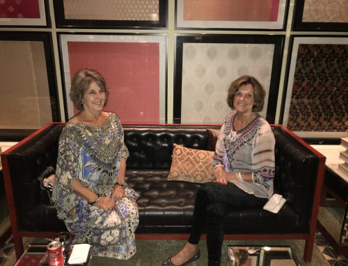 """""""Are you Anne?"""" – words by Anne Jenkins – Princess Diary Rajasthan Tour 2017"""